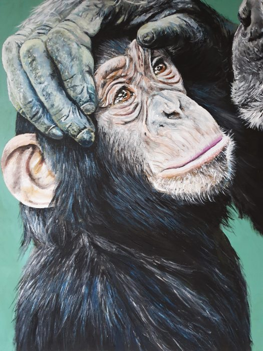 Baby Chimpanzee portrait painting